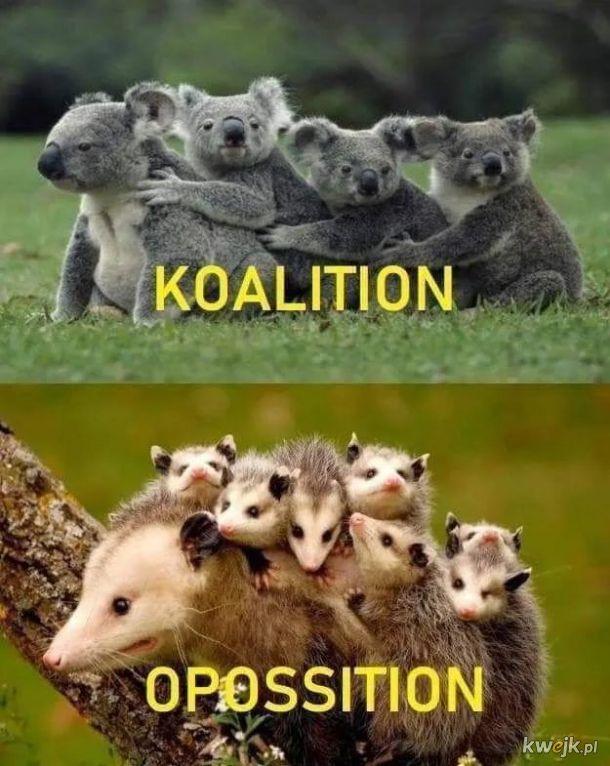 A w Polsce koalicja jest w opozycji :-)