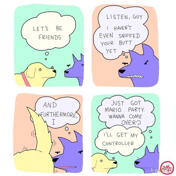 Relacje zwierząt wydają się prostsze...