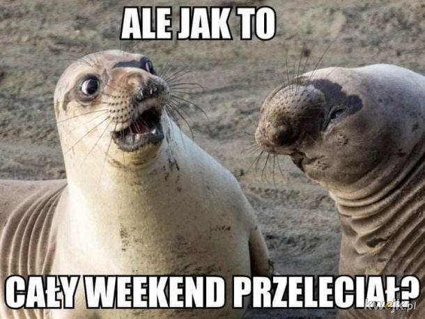 Weekend, weekend i po weekendzie