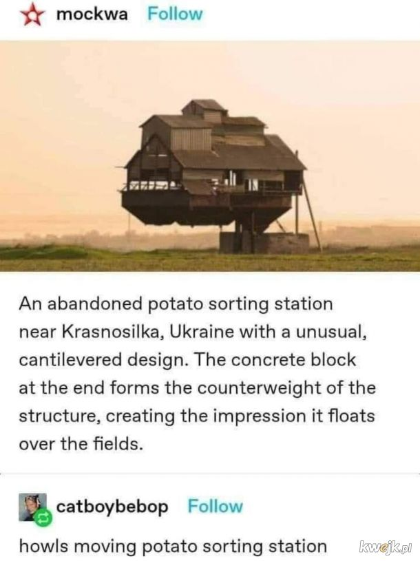 Sortownia kartofli.