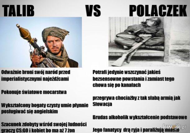 Talib vs Polaczek