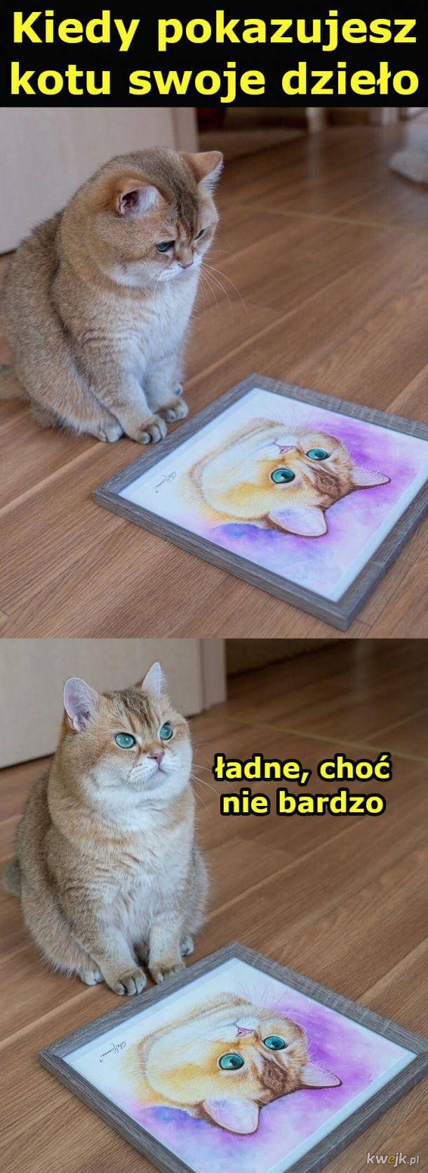 Kiedy pokazujesz kotu swoje dzieło