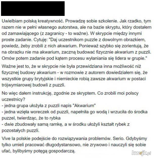 Polska kreatywność