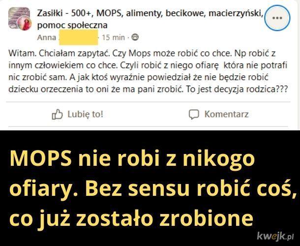 Czy na sali jest tłumacz z mopsiarskiego na polski?