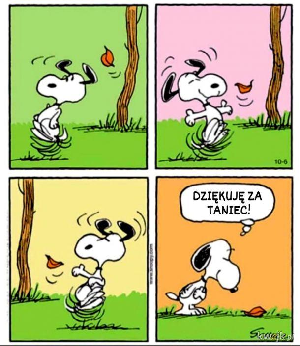 Taniec z liśćmi