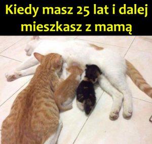ten_nielubiany