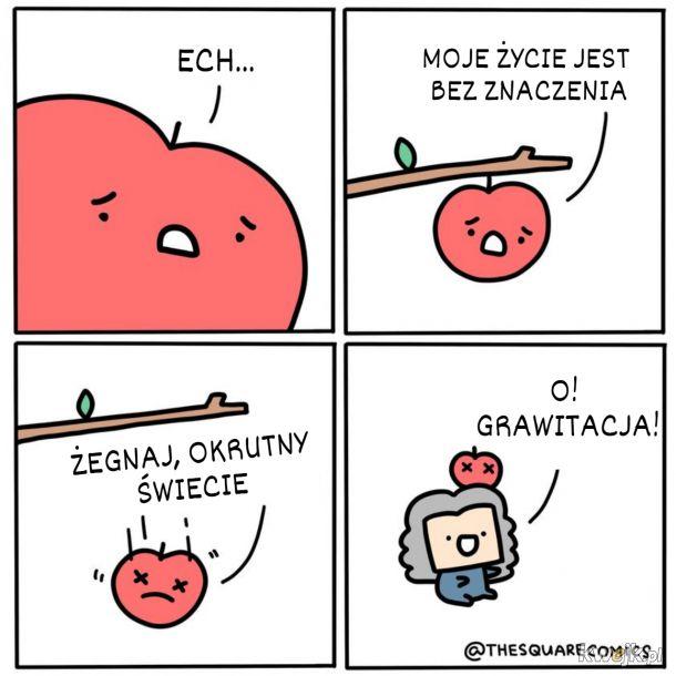 Nawet zdołowane jabłuszko ma znaczenie ;]