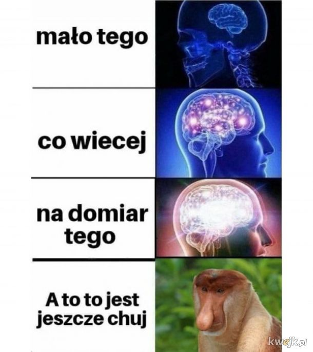 Polski Janusza
