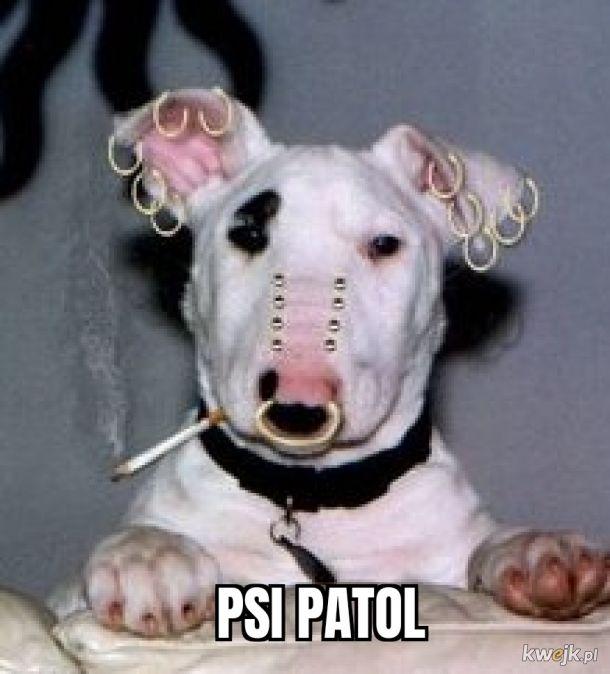 Trochę inny psi patrol