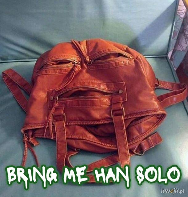 Handbag the Hutt
