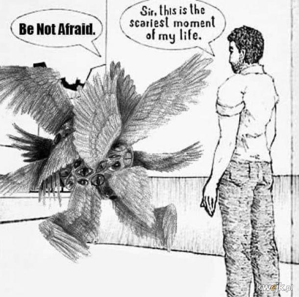 Anioły zgodne z opisami w Biblii - jakie są, każdy widzi