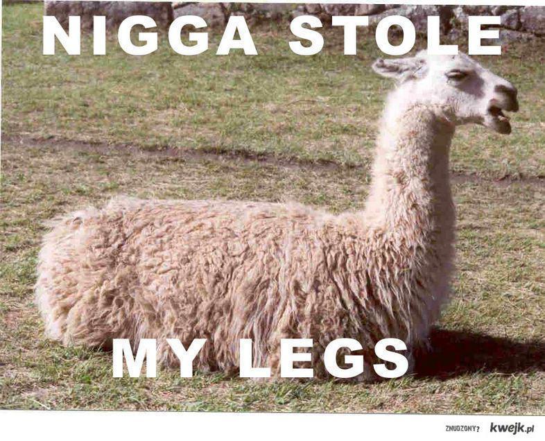 NIGGA STOLE MY LEGS