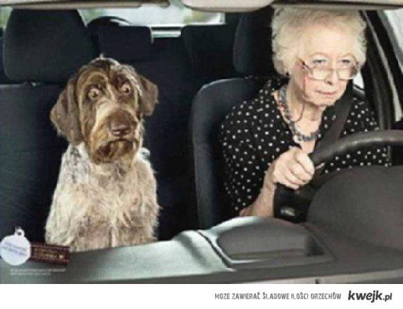 grandma_driving