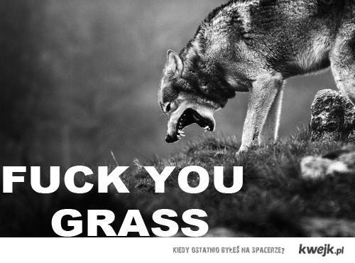 fu_grass