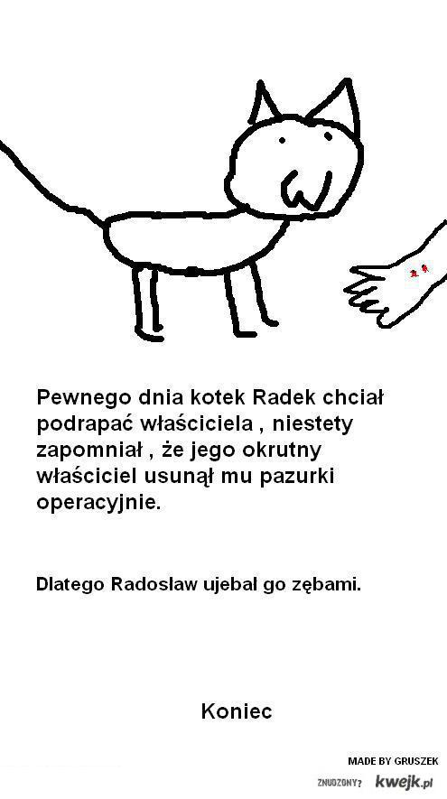 Kot Radeczek