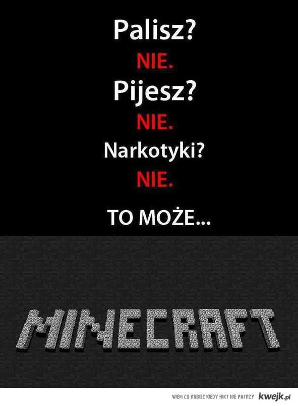 może minecraft?