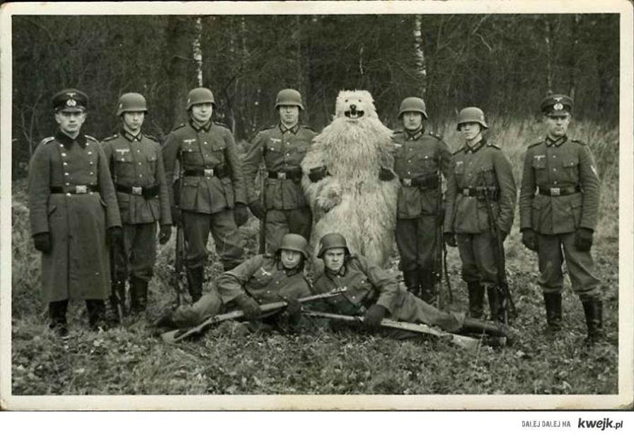 Deutsch Bear