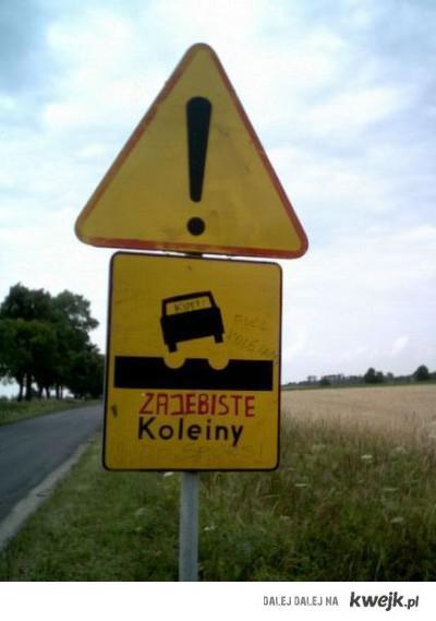 Koleiny