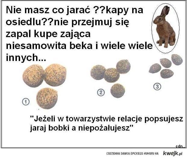 ZjedzMojeDzirkiW3D
