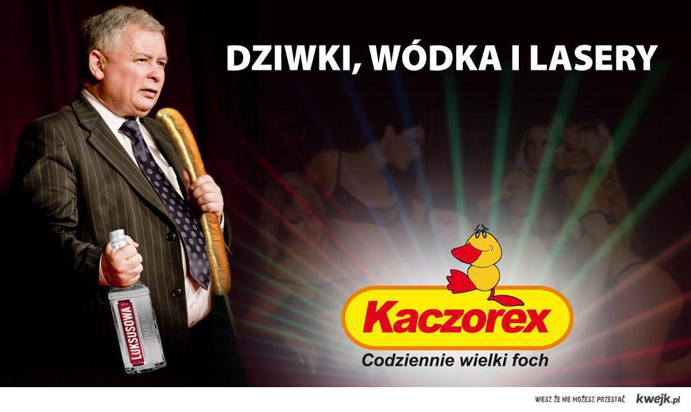 ZAKUPY KACZOREX