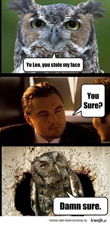 stole_face