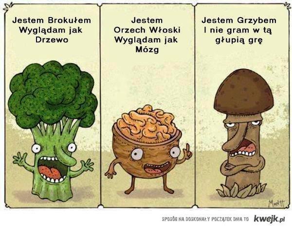 grzyb jak chuj xd