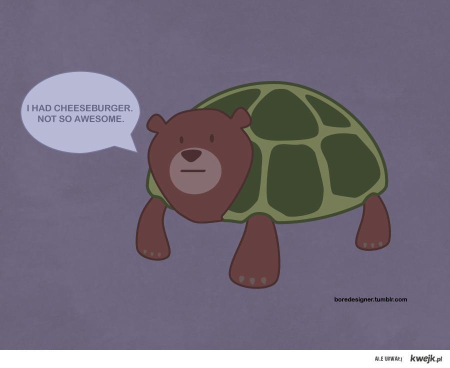 Żółwiomiś przemówił