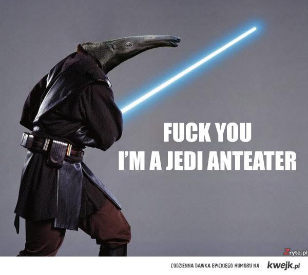 Jedi Anteater