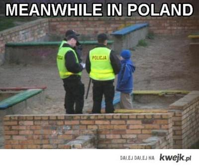 Meanwhile in Poland 3