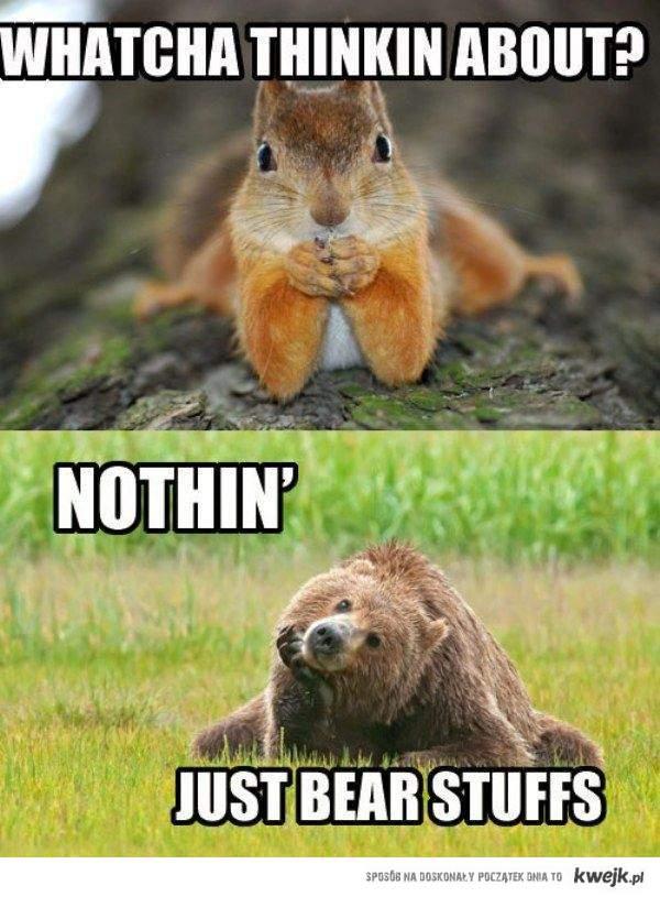 bear stuffs <3