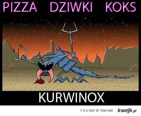 KURWINOKS