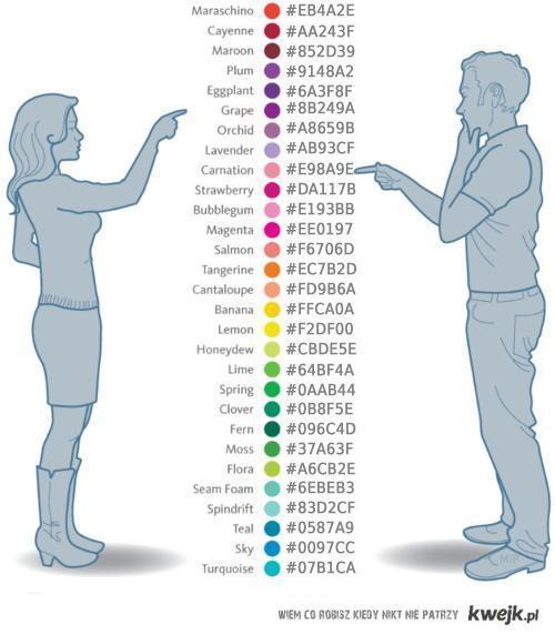 Kolory - grafik