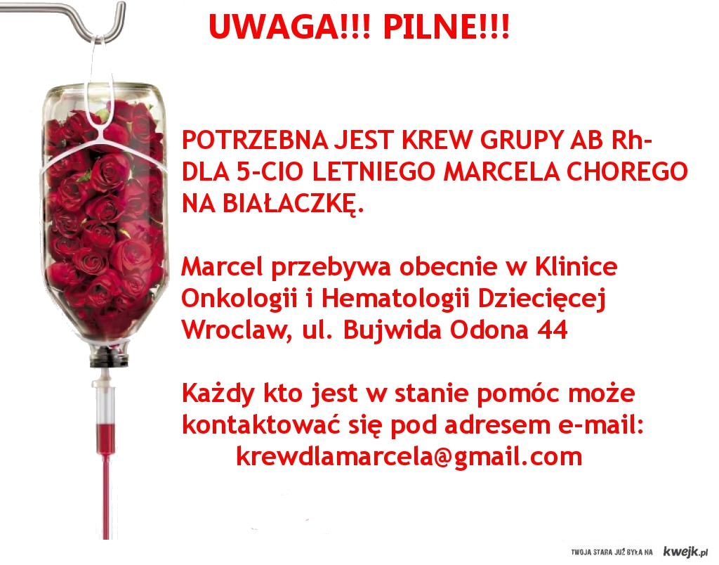krew dla marcela