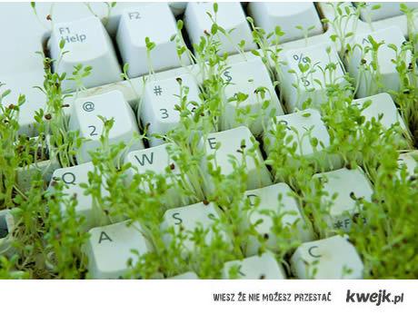 Bio-keyboard