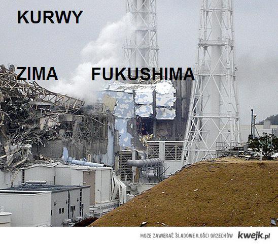 kurwy zima fukushima