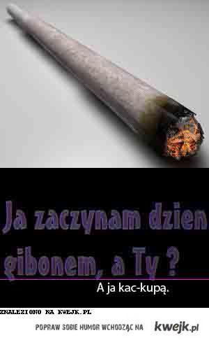kac-kupa