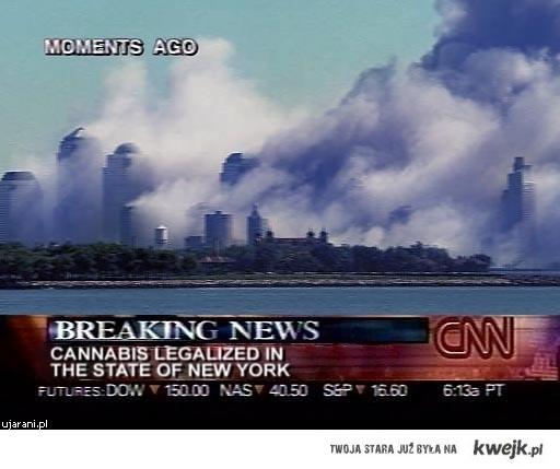 Cannabis111