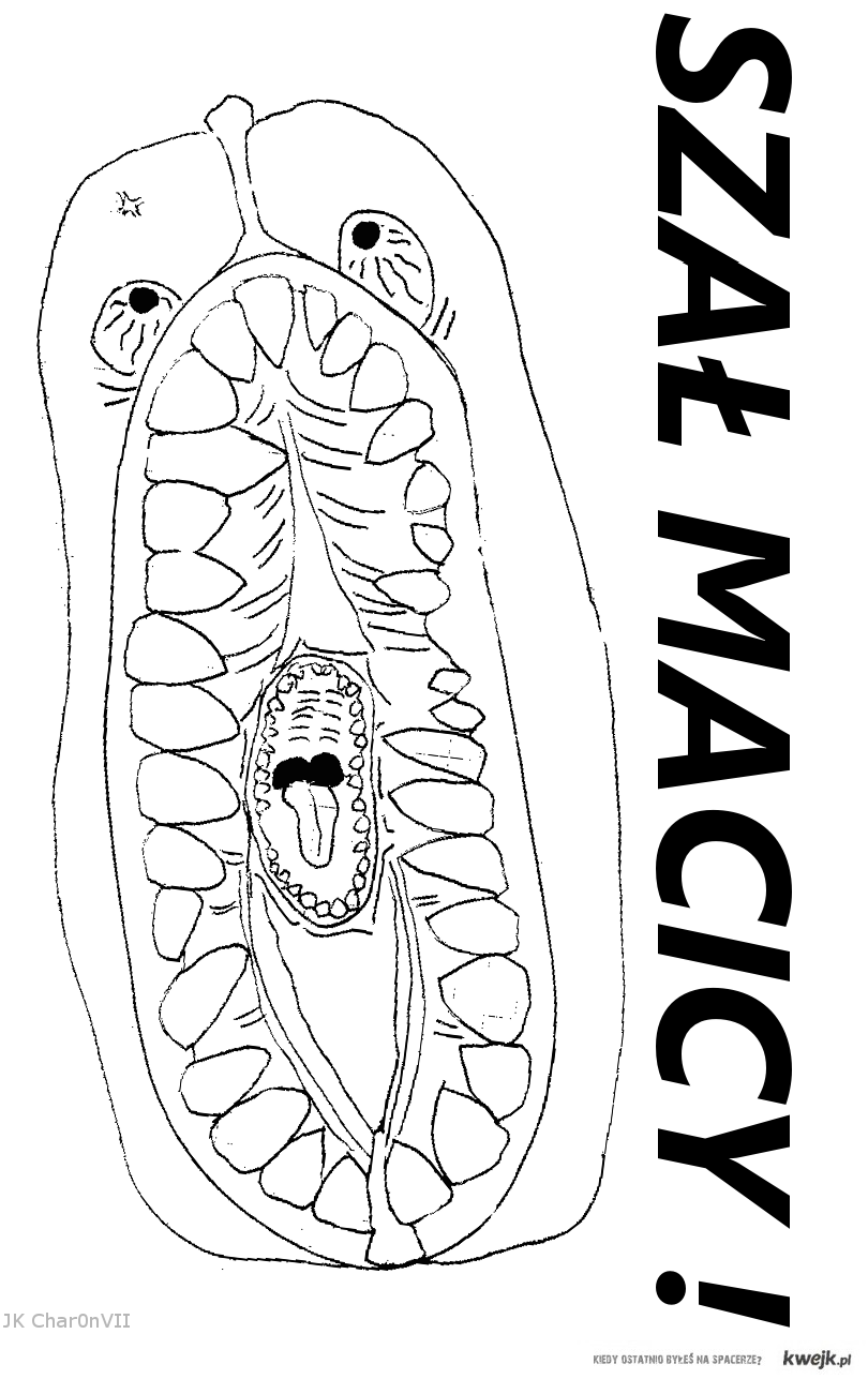 Szał Macicy