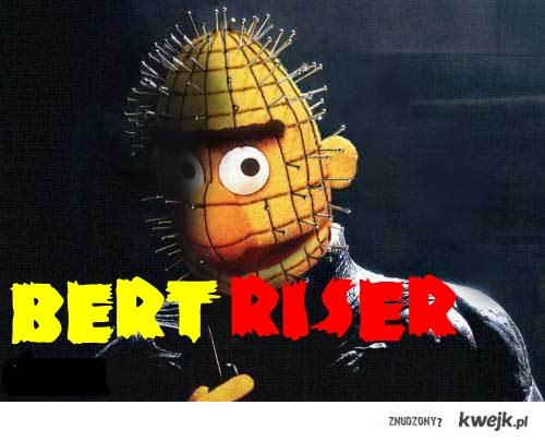 Bertriserwtf