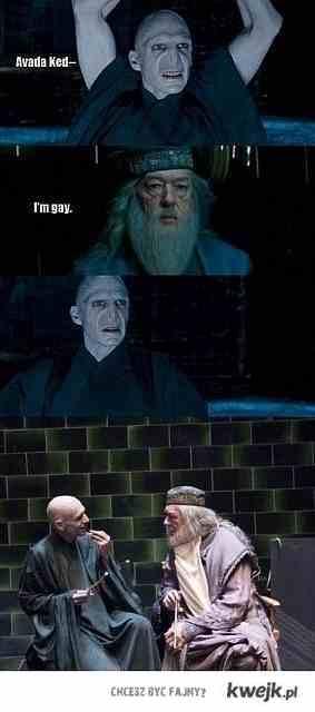 Dumbledore is gay.