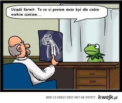 Kermit szok