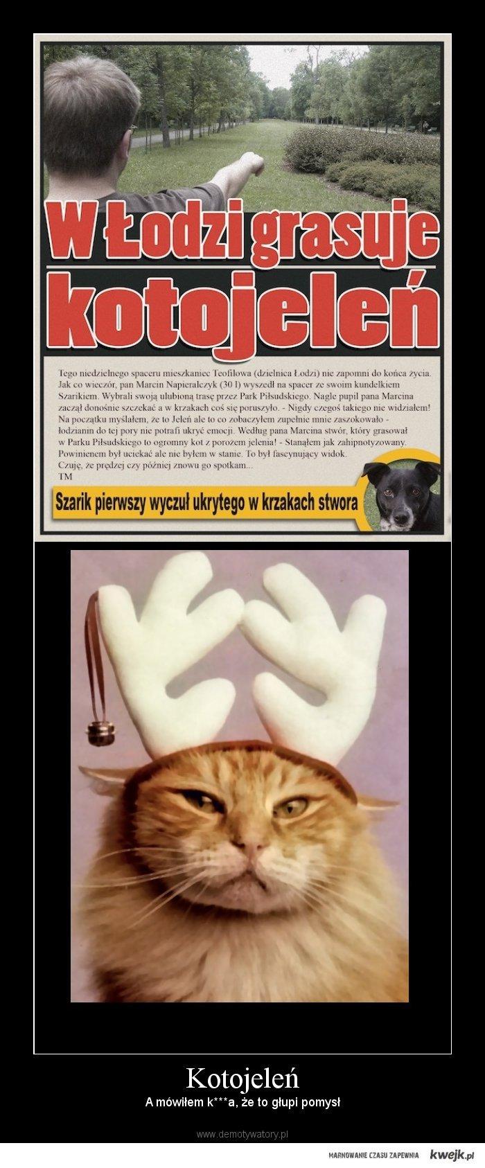 Kotojeleń - głupi pomysł