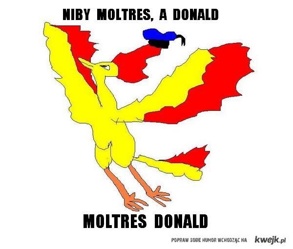 Moltres Donald