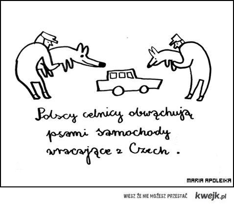 polscy celnicy