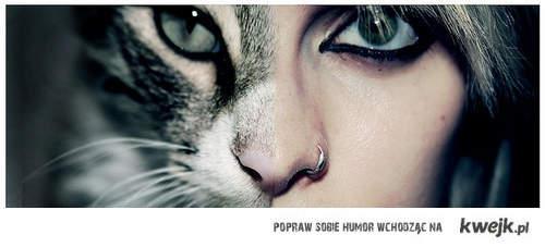 kobieta kot