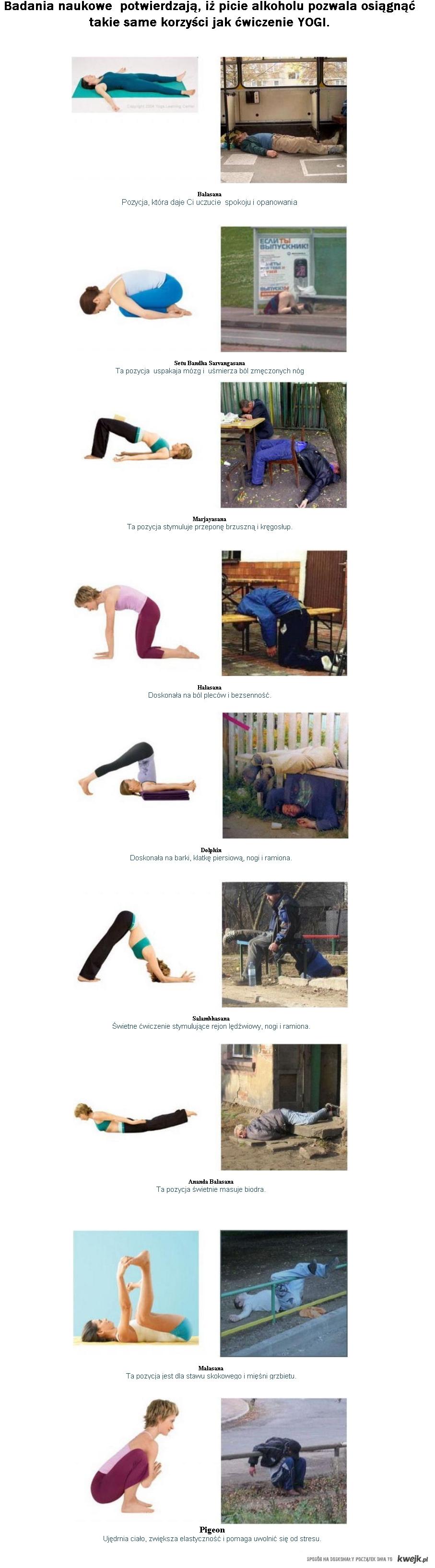 alko vs yoga