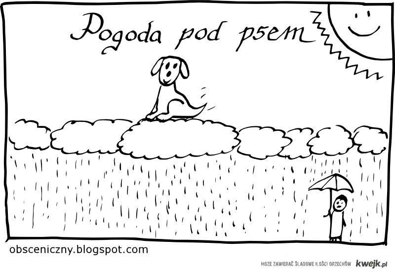 Pogoda pod psem.