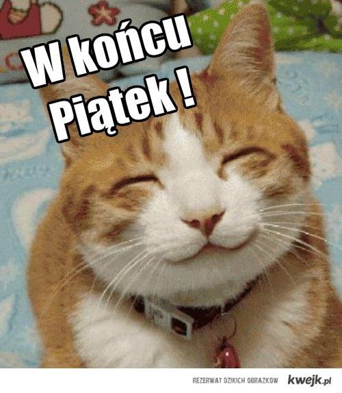 PIĄTEK !!