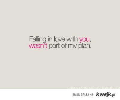 plan.