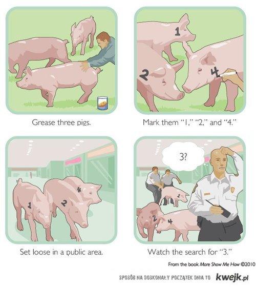 Klasyczny świński żart